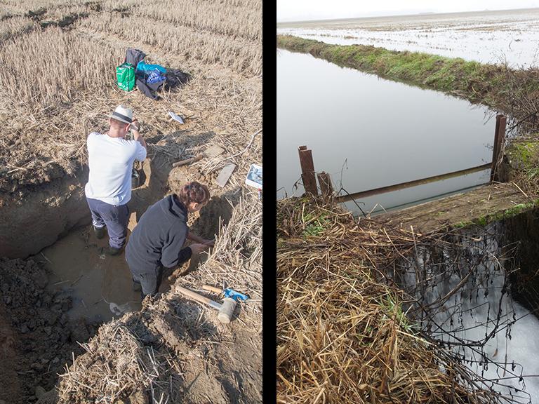 a sinistra: campioni di suolo sottoposti a misura della curva di ritenzione per mezzo di piastre di Richards - a destra: sommersione invernale delle risaie