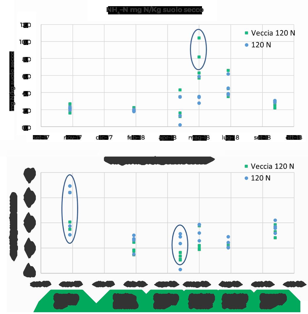 Figura 4 — concentrazione di azoto ammoniacale e nitrico misurato durante la stagione colturale 2017–2018