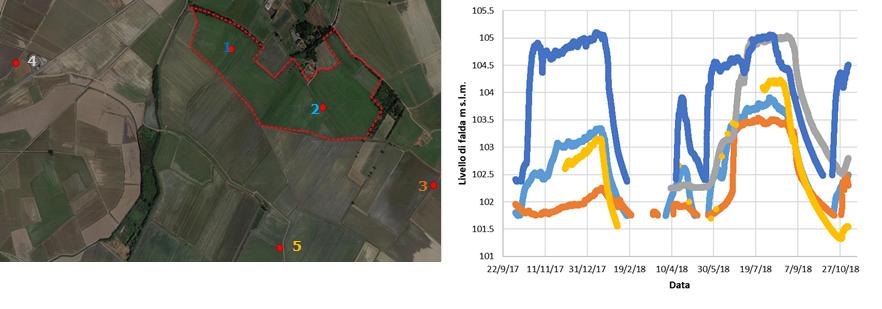 Fig. 10 — Livelli di falda (m s.l.m.) misurati nell'unità aziendale U1 per il periodo ottobre 2017- ottobre 2018; i colori del grafico dei livelli sono i medesimi usati per la numerazione dei pozzi in mappa